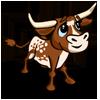 calf_longhorn_brown