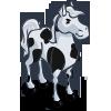 stallion_whiteblack