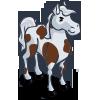 stallion_whitebrown